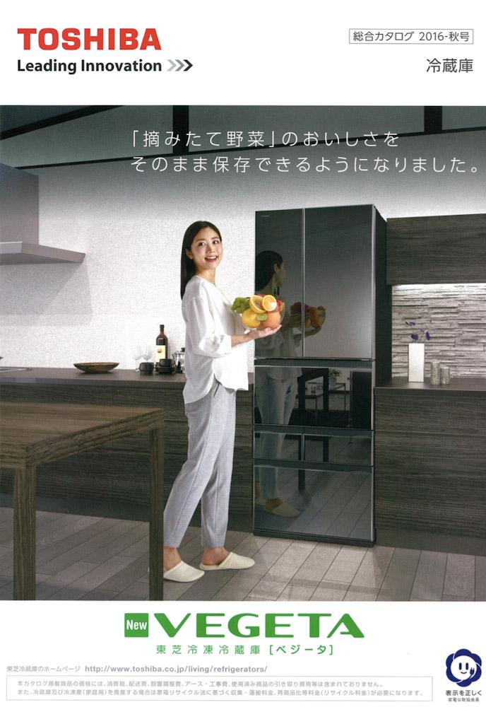 manami-natsume-toshiba